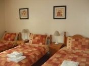Twin / Triple Bedroom in Pearse House